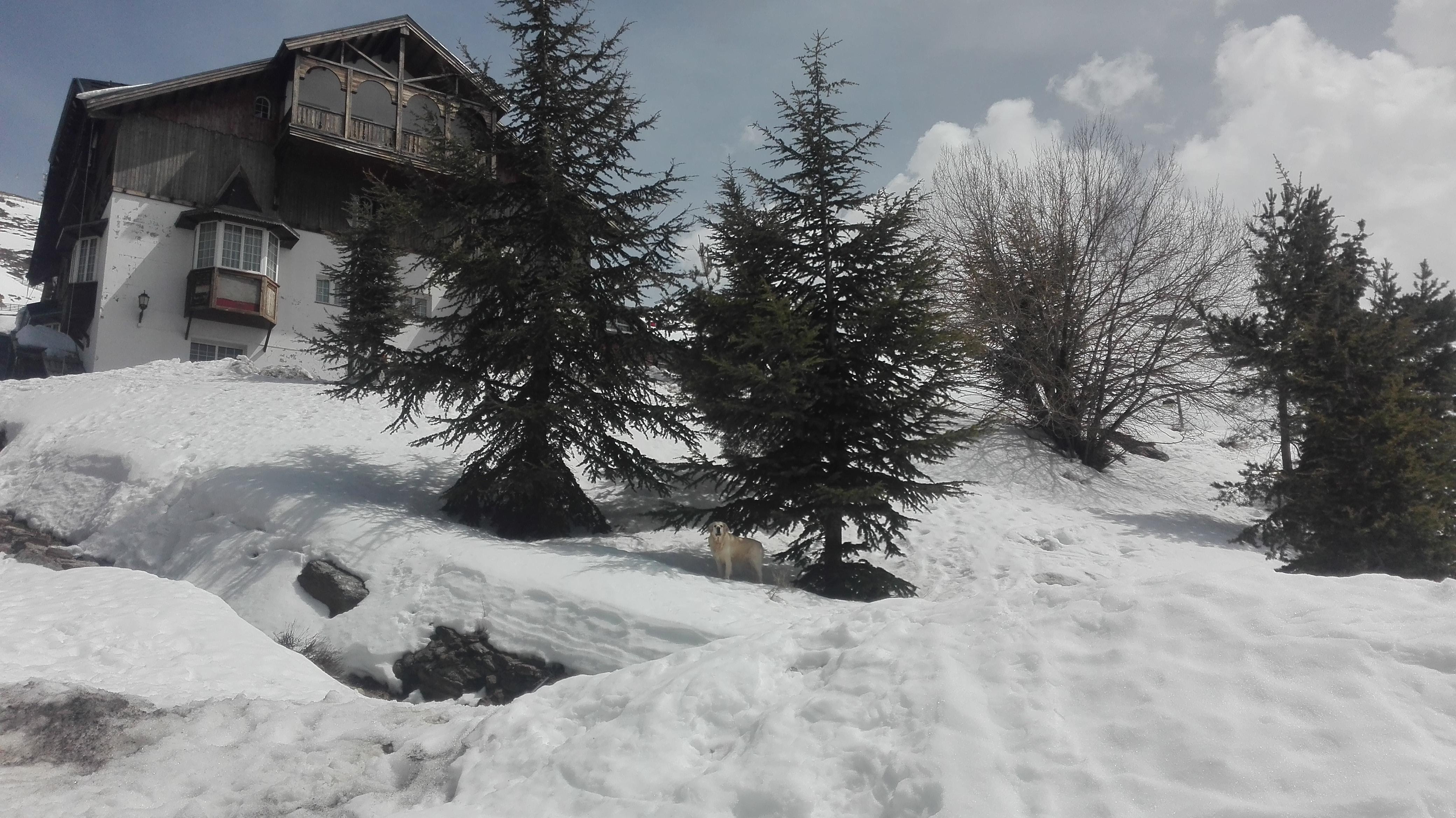 escuela esqui Sierra Nevada